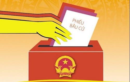 Vận động bầu cử đại biểu Quốc hội và Hội đồng nhân dân thực hiện như thế nào?
