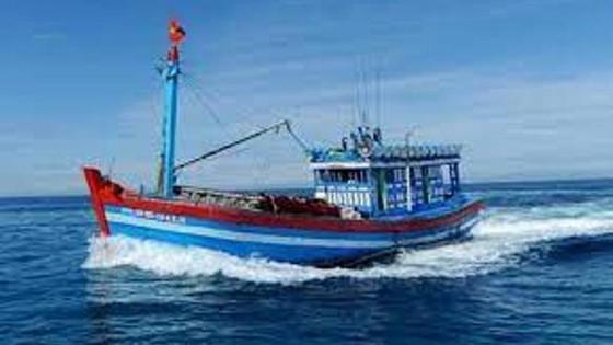 Quảng Ngãi: Ba ngư dân tử vong khi đang hành nghề trên biển