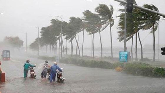 Bão số 5 gây mưa rất to tại Trung Bộ từ ngày 11 - 14/9